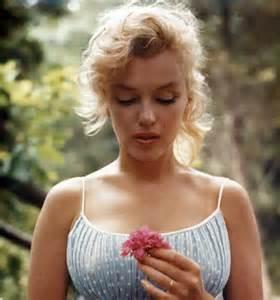 Marilyn flower