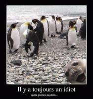humour-10