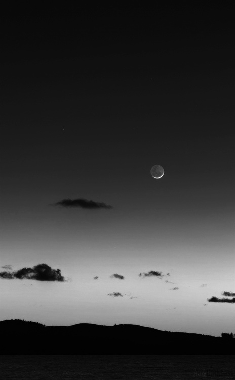 landscapes_02