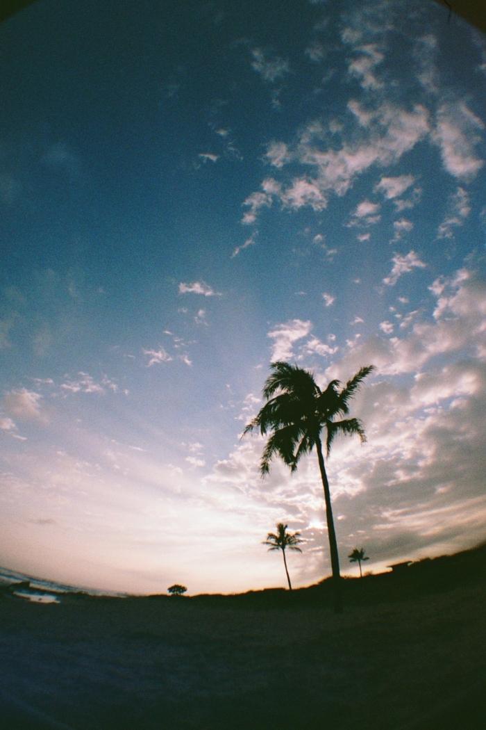 landscapes_06