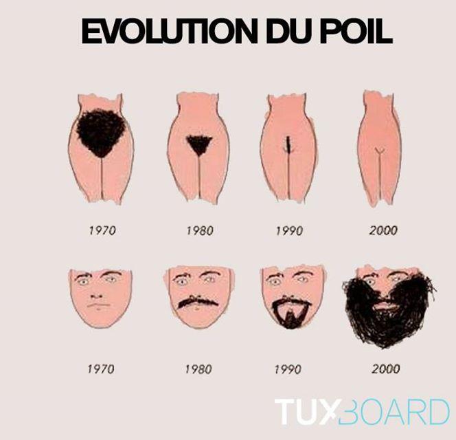 20150121_Humour_Poil