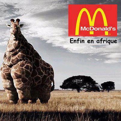 McDo Afrique