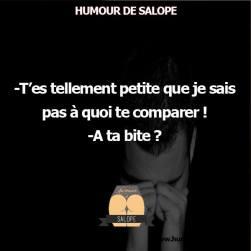 20150508-Humour_21