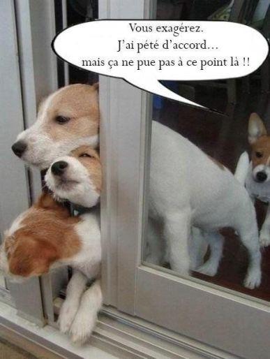 20151125-Humour_FR-031-01