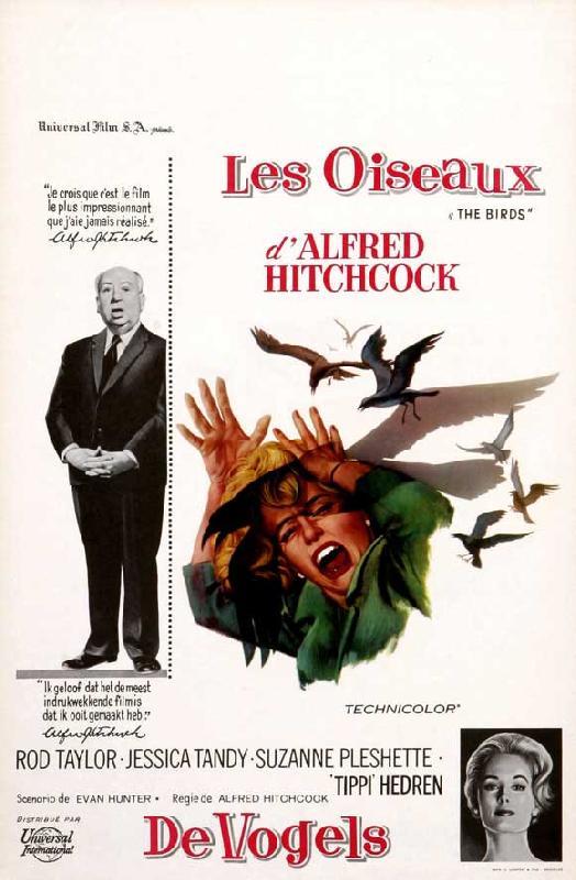 xl_3334-affiche-film-alfred-hitchcock-les-oiseaux