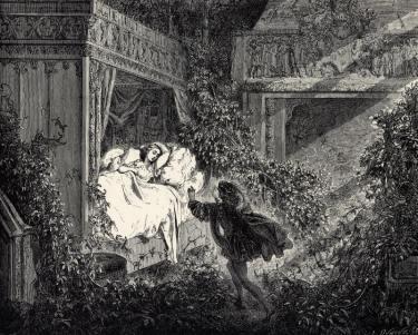 La_Belle_au_Bois_Dormant_-_Sixth_of_six_engravings_by_Gustave_Doré