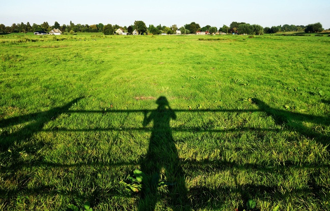 Illustration d'une personne seule dans la campagne. Un Français sur dix vit dans un isolement objectif.