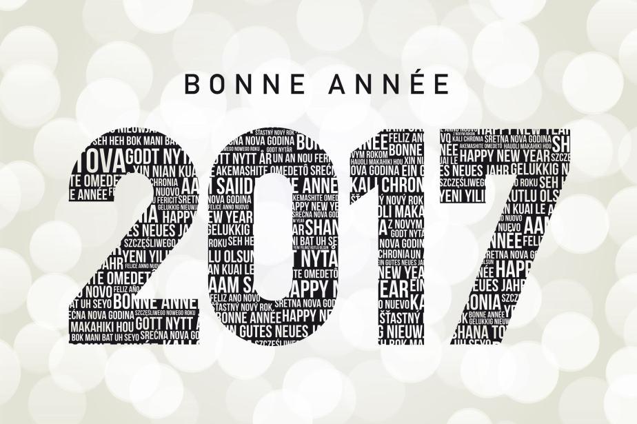 20161231 -20170101 – Happy New Year 2017 / Bonne et heureuse année 2017 (Pimpf /Pimpfdm.Net)